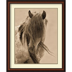 Freedom by Lisa Dearing: 28 x 34 Print Reproduction