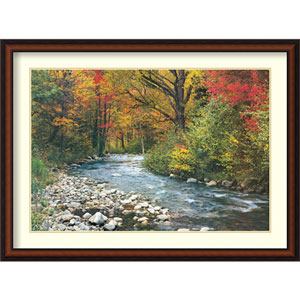 Forest Creek I: 43 x 32-Inch Framed Art Print