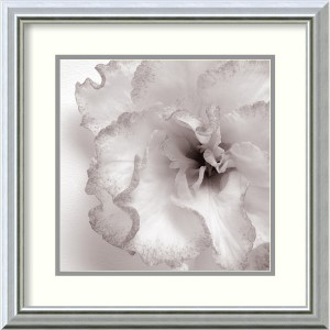 Blossom [Two] by Jk Driggs: 18 x 18 Print Reproduction