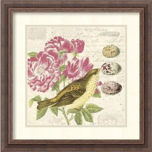Bird Study 3 by Paula Scaletta: 18.25 x 18.25 Print Reproduction