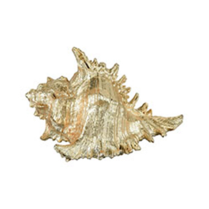 Queen Conch Gold Shell Decorative Accessory