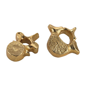 Gold Whale Bones, Set of Two