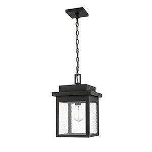 Powder Coat Black 11-Inch One-Light Outdoor Pendant