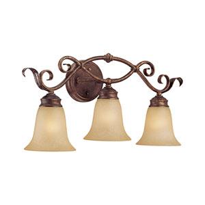 Burled Bronze/Silver Three-Light Bath Light with Florentine Scavo Glass