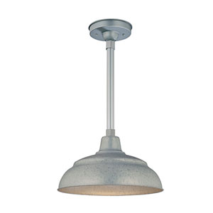R Series Galvanized 14-Inch Warehouse Outdoor Pendant with 24-Inch Stem