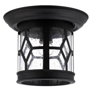 Atlanta Black 7.5-Inch One Light Outdoor Wall Light with Clear Seeded Glass