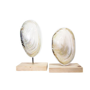 Coastal Retreat Natural Mother of Pearl Oceanside Finials, Set of 2