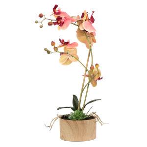 Pink and Orange Orchid Arrangement