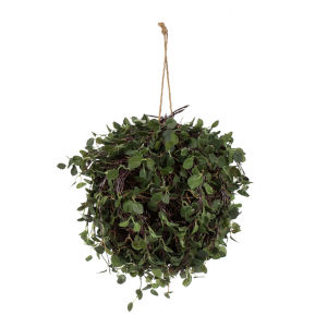 Green Angel Vine Hanging Ball