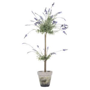 Green 44-Inch Lavender in Cement Pot