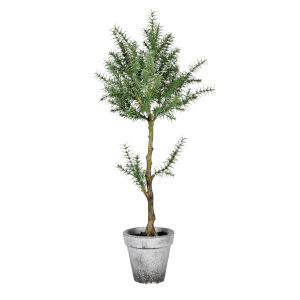 Green 24-Inch Plant in Cement Pot