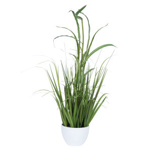Green 32-Inch Potted Bamboo Grass