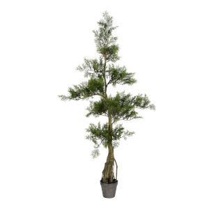 Green 4-Feet Potted Cedar Tree with 208 Leaves