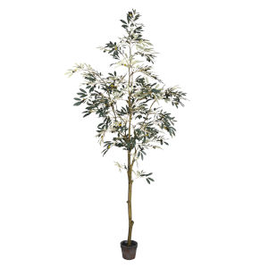 Green P7-Feet otted Olive Tree with 1175 Leaves