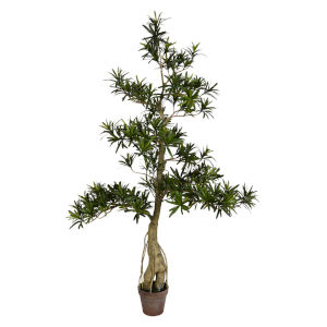 Green 4-Feet Potted Podocarpus Tree with 2370 Leaves