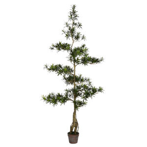 Green 6-Feet Potted Podocarpus Tree with 4020 Leaves