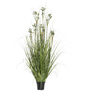Green 36-Inch Grass with Pomp Balls in Pot