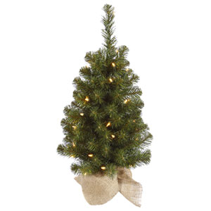 Felton Pine Green 24-Inch Tree with 35 Clear Lights