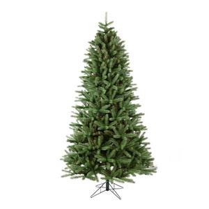 7 Ft. 6 In. Slim Colorado Spruce Tree