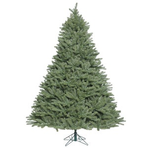 6 Ft. 6 In. Colorado Spruce Tree
