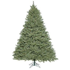 6 Ft. 6 In. Colorado Spruce Tree