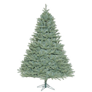 7 Ft. 6 In. Colorado Blue Spruce