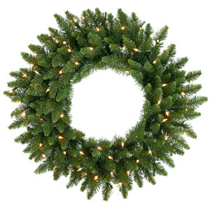 Camdon Fir 24-Inch Wreath w/45 Frosted Warm White Wide Angle LED Lights and 130 Tips