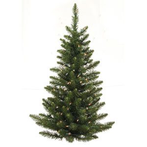 Green 3 Foot LED Camdon Fir Tree with 50 Warm White Lights