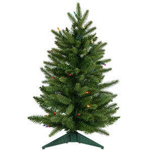 Frasier Fir 24-Inch Christmas Tree w/50 Multi-color Dura-Lit Lights and 90 Tips