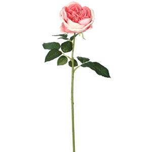 Dark Pink Open Rose Stem, Set of Six