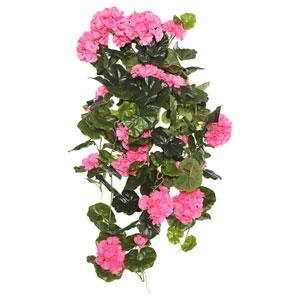 Pink Geranium Hanging Bush