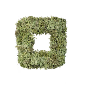 15.5 In. Reindeer Moss Square