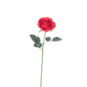 Red Rose Stem, Set of Six