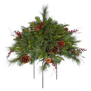 Green Cibola Mix Berry Bush 1.5-foot x 27-inch