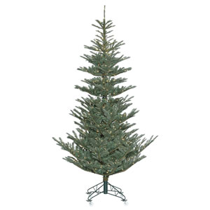 7 Ft. 6 In. Alberta Blue Spruce Tree
