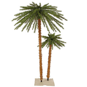 Outdoor Palm Trees, 4 and 6 Ft.