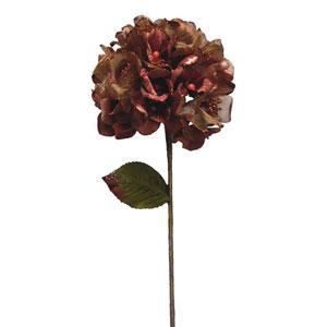 Chocolate Velvet Hydrangea Flower