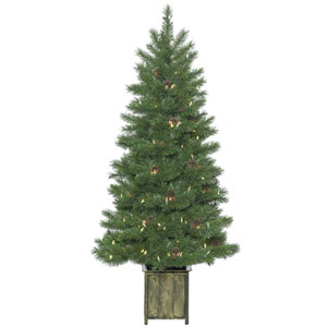 5 Ft. Potted Newfield Tree