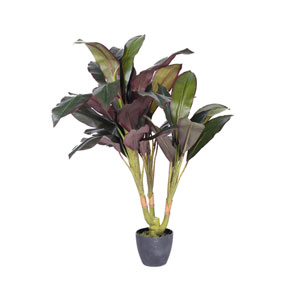 30 In. Real Touch Dracaena in Pot