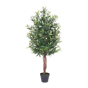 50 In. Olive Tree in Pot
