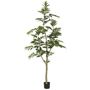 7 Ft. Potted Nandina Tree