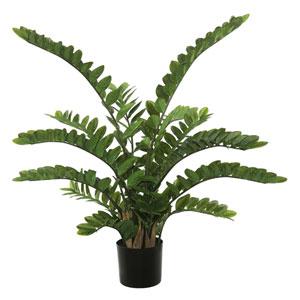 52 Ft. Zamifolia Bush