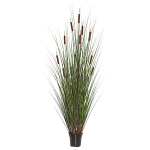 60 In. Grass with Twelve Cattails Potted