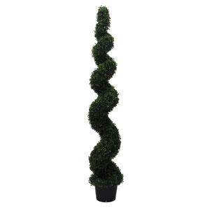 6 Ft. Boxwood Spiral In Pot (UV)