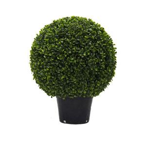 20 In. Boxwood Ball In Pot UV
