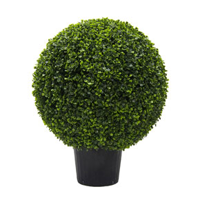 24 In. Boxwood Ball In Pot UV