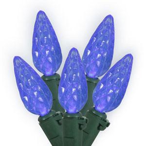 Blue 100 Foot LED Light Set with 200 Lights