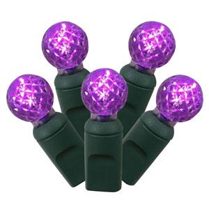 Purple LED Light Set with 50 Lights