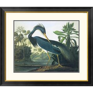 Louisiana Heron By John James Audubon, 30 X 34-Inch Wall Art