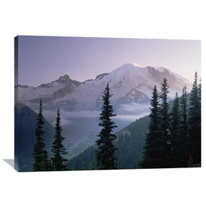 Mt Rainier As Seen At Sunrise, Mt Rainier National Park, Washington By Tim Fitzharris, 30 X 40-Inch Wall Art